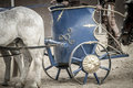 Detail, Roman chariot in a fight of gladiators, bloody circus Royalty Free Stock Photo