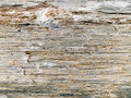 Detail of rough rock surface Stock Photography