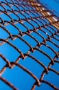 Wire fencing Royalty Free Stock Photo