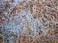 Detail of Shredded Paper Royalty Free Stock Photo