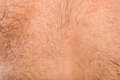 Detail of skin on male back close up hairy Royalty Free Stock Photo