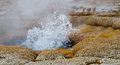 Detail of a small geyser erupting the mouth is shown during an eruption in yellowstone national park s black sands basin the water Stock Photography