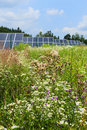 Detail of the solar power station on the meadow in sunny day Royalty Free Stock Photography