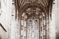 Detail st cecilia cathedral albi Royalty Free Stock Image