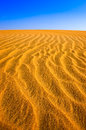 Detail of structured desert sand dune textured at sunny day Royalty Free Stock Image