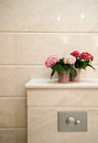 Detail toilet elegant bathroom beige tiles flower decoration shelf chrome flush button Royalty Free Stock Images