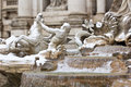 Detail of Trevi Fountain in Rome. Stock Photo