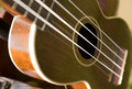Detail of ukulele hanging from musician s guitar rack Stock Photography