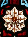 Detail of victorian stained glass window showing white flower close up with yellow stamens and anthers on a red and blue ground Royalty Free Stock Photography