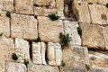 Detail of western wall jerusalem israel Stock Photo
