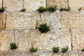 Detail of western wall jerusalem israel Stock Image