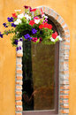 Detail window with ivy wall Royalty Free Stock Photo