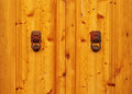 Detail of a wooden door with two metal lions Stock Image