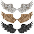 Detailed Bird Wings Stock Photos