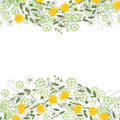 Detailed contour square frame with herbs, daisy and other flowers isolated on white. Greeting card for your design.