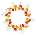 Detailed contour wreath  with gerbera and berries isolated on white. Round frame  for your design. Royalty Free Stock Photo