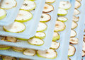 Detailed photo home made dehydrated apples pears Royalty Free Stock Photo