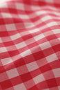 Detailed red picnic cloth Royalty Free Stock Photo