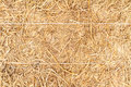 Detailed stack of hay close up view Royalty Free Stock Photo