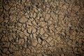 Detailed texture: broke dry soil background Royalty Free Stock Photo