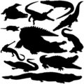 Detailed Vectoral Crocodile Silhouettes Stock Image