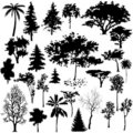 Detailed Vectoral Tree Silhouettes Stock Photography
