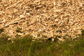 Detailed view at grass and a pile of dumped woodchips in the bac closeup heap Royalty Free Stock Photography