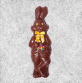 Details of a big chocolate bunny in the box Royalty Free Stock Photos