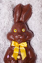 Details of a big chocolate bunny in the box Royalty Free Stock Image