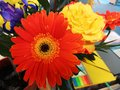 Bouquet of beautiful yellow, orange and violet flowers Royalty Free Stock Photo