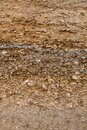 Details of the geological formation of layers on the seashore. The layer consists of shells and sand Royalty Free Stock Photo