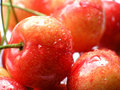 Details of red cherries Royalty Free Stock Photo