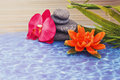 Details of daily spa, stones and orchid Stock Photography