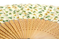 Detalis Chinese fan Royalty Free Stock Photo
