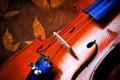 Detalles del violín Imágenes de archivo libres de regalías