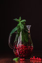 Detox drink with red currants berries and mint in glass jug Royalty Free Stock Photo