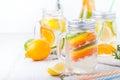 Detox fruit infused flavored water. Refreshing summer homemade lemonade cocktail