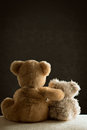 Deux teddy bears Photos libres de droits