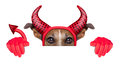 Devil dog behind a blank white banner Stock Photography