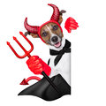 Devil dog behind a blank white banner Royalty Free Stock Photography