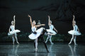 The devil Rothbart poisoned Ojta Swan-The last scene of Swan Lake-ballet Swan Lake Royalty Free Stock Photo