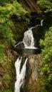 Devil's Bridge Falls in Wales Royalty Free Stock Photo
