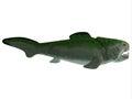 Devonian Dunkleosteus Fish Royalty Free Stock Photo