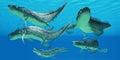 Devonian Xenacanthus Fish Royalty Free Stock Photo