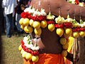 A devotee at a kavady festival is hindu atonement characterised by the piercing of tongues and bodies with long steel needles and Royalty Free Stock Images