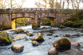 Dewerstone woods dartmoor footbridge in Royalty Free Stock Photo