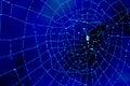 Dewy cobweb in blue Royalty Free Stock Photo