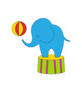 Dexterous circus cartoon elephant on podium with ball illustration Stock Photography