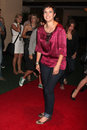 Diablo cody arriving at the jennifers body comic con party in the kin lounge at the manchester grand hyatt hotel in san diego ca Stock Photo
