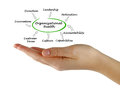 Diagram of Organizational Health Royalty Free Stock Photo